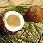 Des noix de coco
